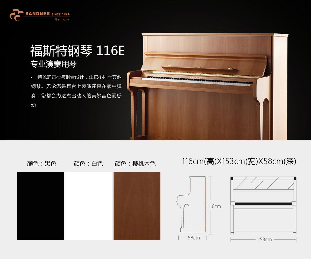 福斯特<a  data-cke-saved-href=http://franzsandner.com/ href=http://franzsandner.com/ target=_blank class=infotextkey>钢琴</a>-116E.jpg
